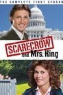 Scarecrow and Mrs. King (1983)