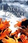 Latcho Drom (1993) Movie Reviews