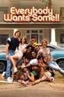 Poster for Everybody Wants Some!!