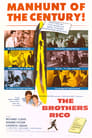 The Brothers Rico (1957) Movie Reviews