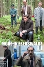 Mord in Eberswalde (2013)