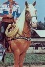Trigger isTrigger - Roy's Horse