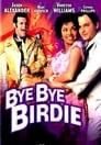 Poster for Bye Bye Birdie
