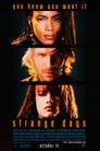 Strange Days (1995) Movie Reviews