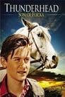 Thunderhead - Son of Flicka (1945) Movie Reviews