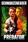 Predator (1987) Movie Reviews