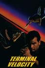 Terminal Velocity (1994) Movie Reviews