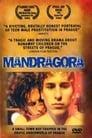 Poster for Mandragora