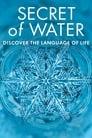 مشاهدة فيلم Secret of Water 2015 مترجم أون لاين بجودة عالية