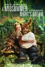 A Midsummer Night's Dream (2017) Movie Reviews