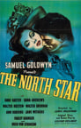 0-The North Star