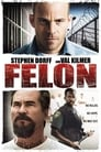 Felon (2008) Movie Reviews