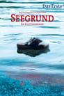 Regarder.#.Seegrund - Ein Kluftingerkrimi Streaming Vf 2013 En Complet - Francais