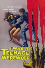I Was A Teenage Werewolf HD En Streaming Complet VF 1957