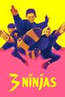 [Voir] Ninja Kids : Les 3 Ninjas 1992 Streaming Complet VF Film Gratuit Entier