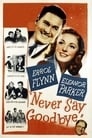 Poster for Never Say Goodbye