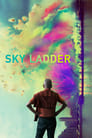 Sky Ladder: The Art of Cai Guo-Qiang (2016) Movie Reviews