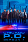 Chicago Police Department saison 7 episode 18