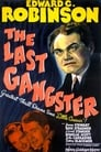 The Last Gangster (1937) Movie Reviews