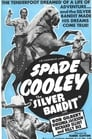 Poster for The Silver Bandit