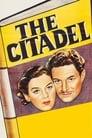 The Citadel (1938) Movie Reviews