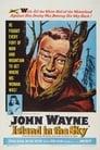 Island in the Sky (1953) Movie Reviews