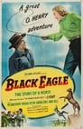 Poster for Black Eagle