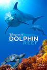 Dolphin Reef (2020) Movie Reviews