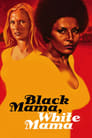 Poster for Black Mama, White Mama