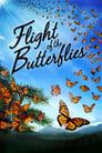 Der Flug der Schmetterlinge (2012)