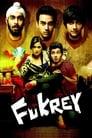 Fukrey (2013) WEB-480p, 720p, 1080p | GDRive & torrent