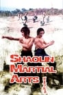 As Artes Marciais de Shaolin