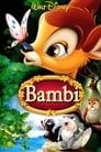 16-Bambi