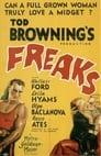 6-Freaks