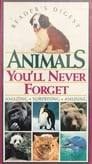 Animals You'll Never Forget