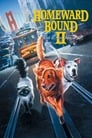Watch Homeward Bound II: Lost in San Francisco Online HD