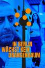 مترجم أونلاين و تحميل In Berlin wächst kein Orangenbaum 2020 مشاهدة فيلم