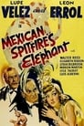 Mexican Spitfire's Elephant (1942) Movie Reviews