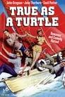 True as a Turtle