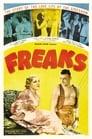 4-Freaks