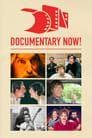 Documentary Now! (2015)
