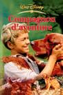 [Voir] Compagnon D'aventure 1962 Streaming Complet VF Film Gratuit Entier