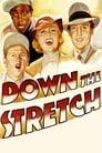 Down the Stretch (1936) Movie Reviews