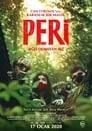 Peri: Ağzı Olmayan Kız Voir Film - Streaming Complet VF 2019