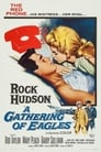 A Gathering of Eagles (1963) Movie Reviews