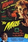 The Maze Voir Film - Streaming Complet VF 1953