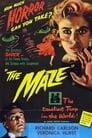 The Maze (1953) Movie Reviews