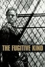 The Fugitive Kind (1959) Movie Reviews