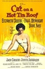 2-Cat on a Hot Tin Roof