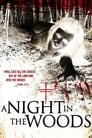 مشاهدة فيلم A Night In the Woods 2011 مترجم أون لاين بجودة عالية